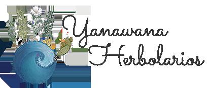 YH-Header-logo